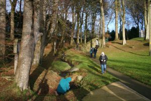 Guided Walk – Exploring the Sacred Sites of Faughart with Pat O'Rourke